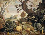 landscape with vegetables in the foreground