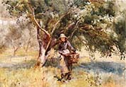Girl with a Basket Walking through an Orchard