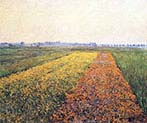 Yellow Fields at Gennevilliers