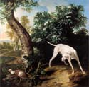 white dog in front of an elderberry bush