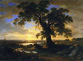 The Solitary Oak