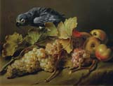still life with a parrot and grapes