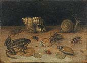 Still life with Frog