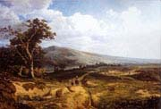 landscape in the ardennes