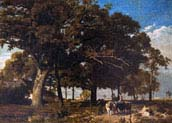 landscape in the dauphine