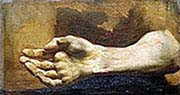Study of Arm and Hand
