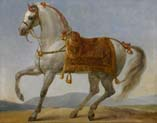 the horse of napoleon called marengo