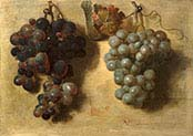Two Clusters of Grapes