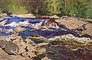 Thompson's Rapids Magnetawan River