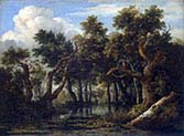 The Marsh in a Forest