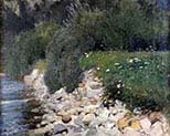 Riverbank with Flower Meadow