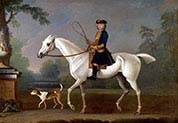 Sir Roger Burgoyne Riding-Badger