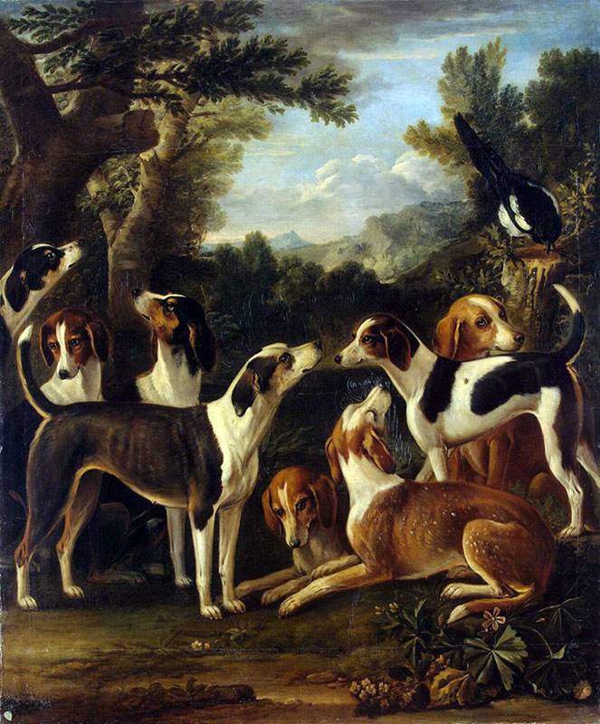 Hounds and a Magpie