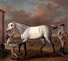 The Duke of Hamilton's Grey Racehorse-Victorious-at Newmarket